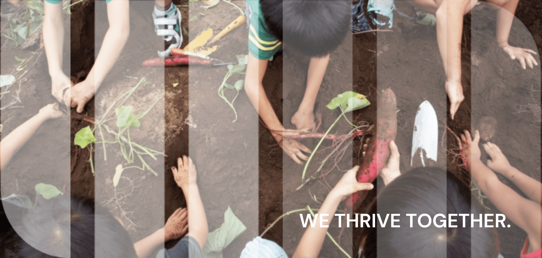 Connectedness, Involvement and Community – March 2021